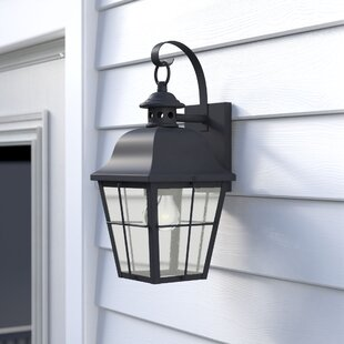 Darby Home Co Danielson 1-Light Wall Lantern