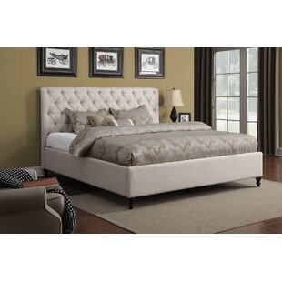 Darby Home Co Leilani Upholstered Panel Bed