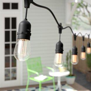 Arielle 10-Light 14 ft. String Light