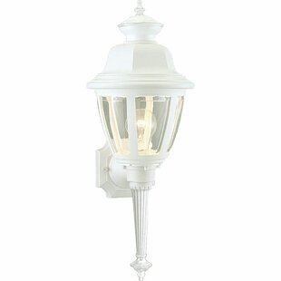 Darby Home Co Philomena 1-Light Outdoor Sconce