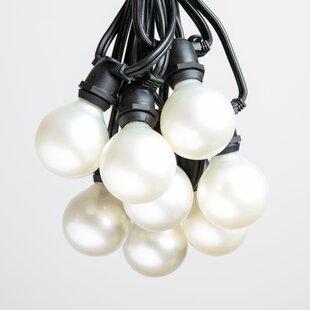Hometown Evolution, Inc. 40-Light Globe String Lights