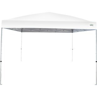 Caravan Canopy V-Series 2 Pro 10 Ft. W x 10 Ft. D Steel Pop-Up Canopy