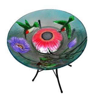 Peaktop Outdoor Garden Hummingbird Solar Birdbath