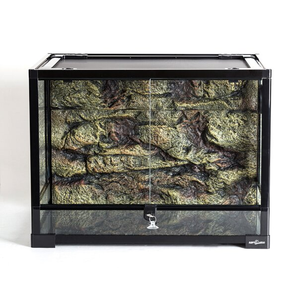 Reptizoo 34 Gallon Lizards Starter Kit Reviews Wayfair