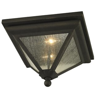 Darby Home Co Nautilus 2-Light Outdoor Flush Mount