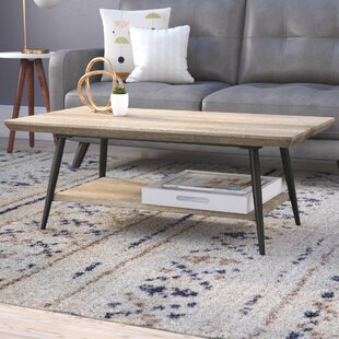 Elizabeth Coffee Table With Storage By Langley Street™