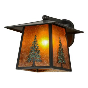 Order Greenbriar Oak 1-Light Outdoor Wall Lantern By Meyda Tiffany