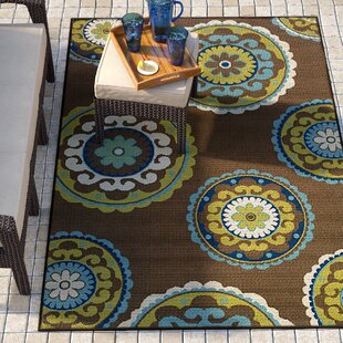 Brendel Brown/Green Indoor/Outdoor Area Rug