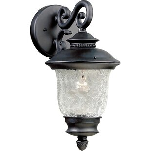 Dean 1-Light Outdoor Wall Lantern