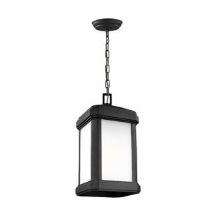 Meghan 1-Light Outdoor Hanging Lantern