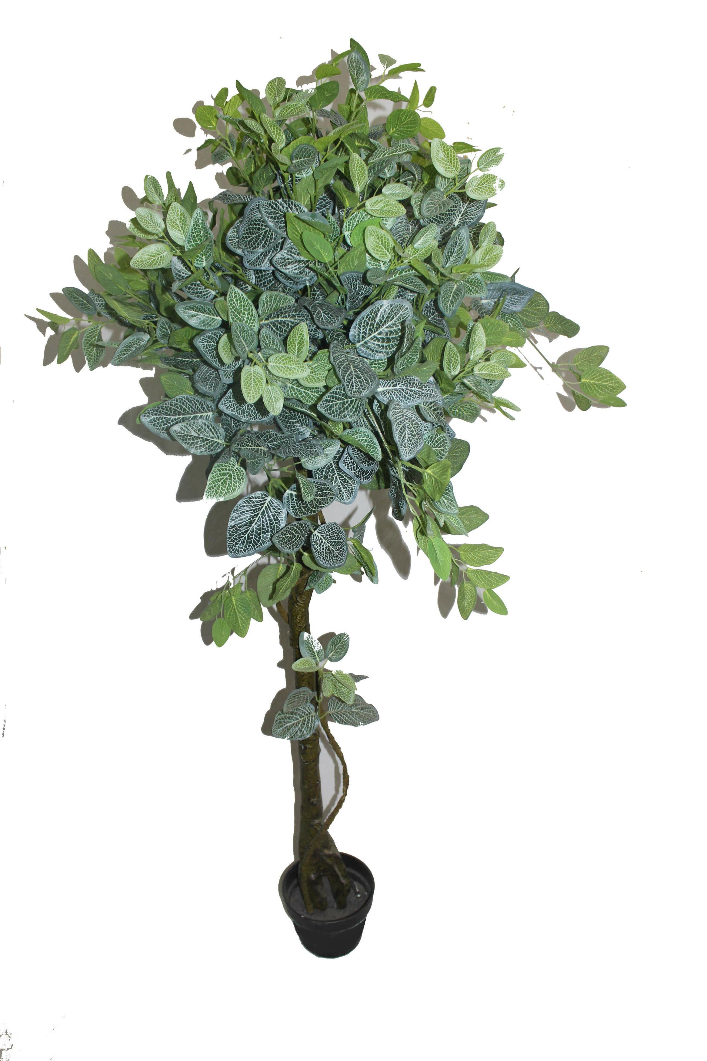 Red Barrel Studio Net Shape Leaf Floor Ficus Tree In Pot Wayfair