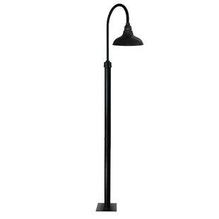 Cocoweb Dahlia 1-Light LED Pos..