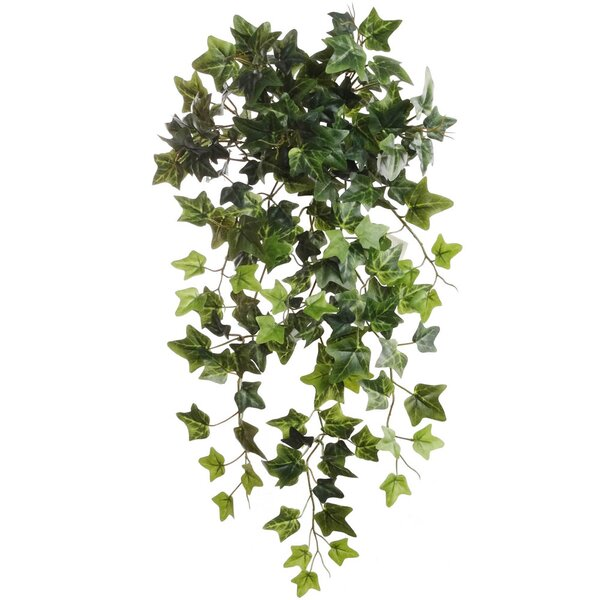 Larksilk 19 Quot Hanging English Ivy Plant Amp Reviews Wayfair