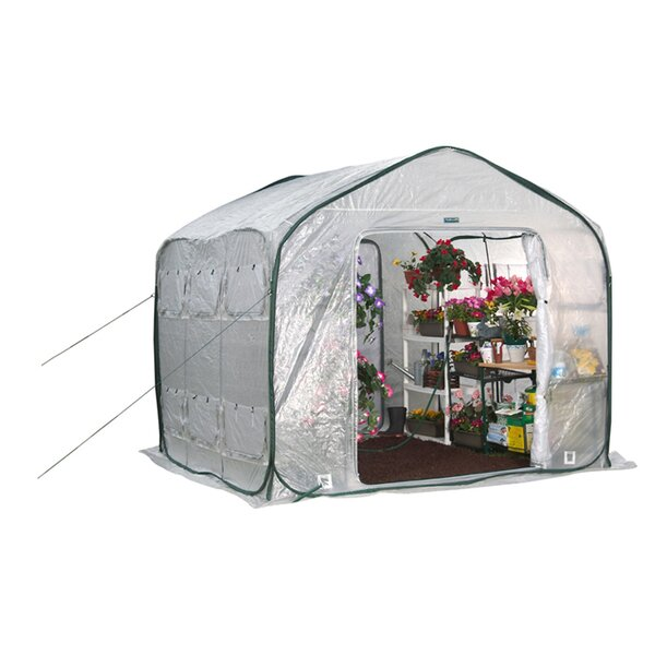 Greenhouses You'll | Wayfair on barn porch design, barn church design, barn stable design, barn home design, barn swimming pool design, barn shop design, barn garage design, barn shed design, barn bedroom design,