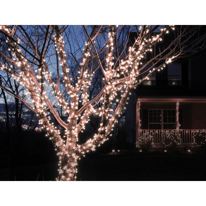 solar string lights hanging liteup 100 solar string lights the holiday aisle reviews wayfair