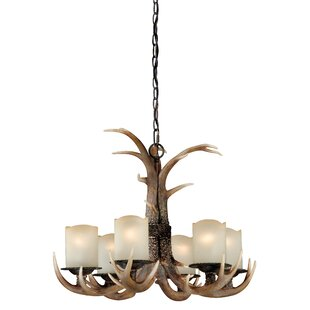Port Chester 6-Light Shaded Chandelier by Loon Peak