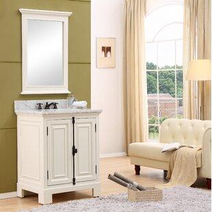 Affordable Price Nico 30 Single Bathroom Vanity Set ByAlcott Hill