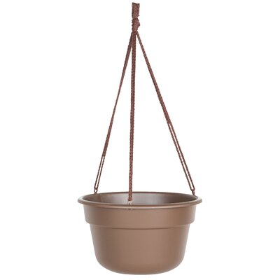 Leadore Self-Watering Vinyl Hanging Planter August Grove Size: 6 H x 10.38 W x 10.38 D, Color: Chocolate