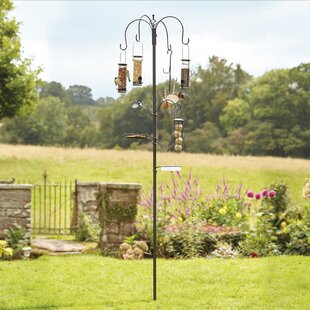 Toro Decorative Bird Feeder By Sol 72 Outdoor