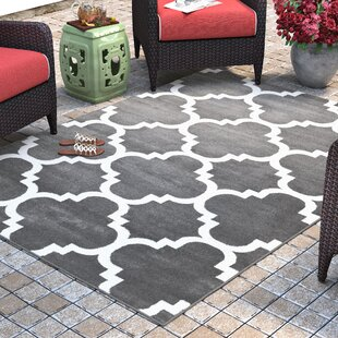 Blocher Charcoal Indoor/Outdoor Area Rug