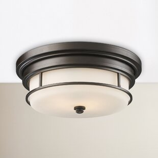 Dashiell 2-Light Flush Mount by Darby Home Co