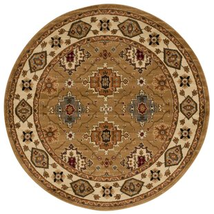 Seymour Gold Area Rug by Andover Mills