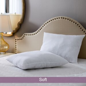 Wayfair Basics Soft Pillow (Set of 2) by Wayfair Basics?