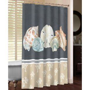 Shells on Slate Shower Curtain by Laural Home