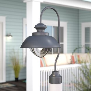 Beachcrest Home Bonaventure 1-Light Lantern Head