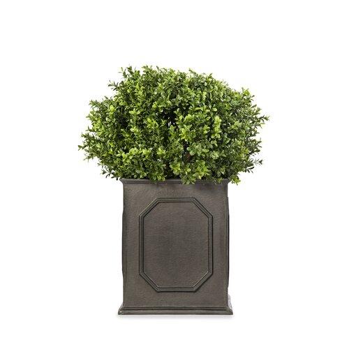 Berenice Fiberglass Planter Box ClassicLiving Size: 73 cm H