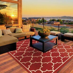 Duncan Red Indoor Outdoor Area Rug