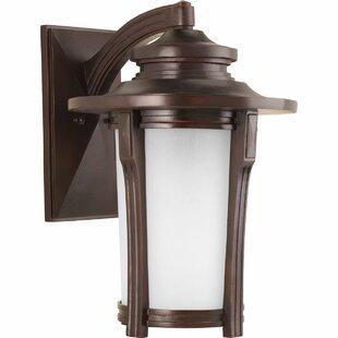 Alcott Hill Triplehorn 1-Light Compact Fluorescent Wall Lantern