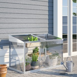 Greenhouses & Cold Frames You'll Love in 2019   Wayfair co uk