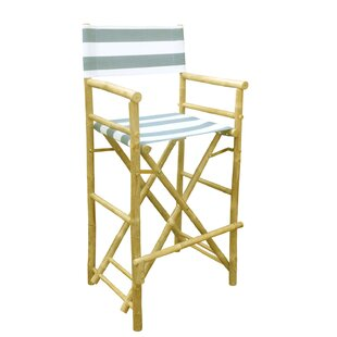Folding Director Chair (Set of 2)