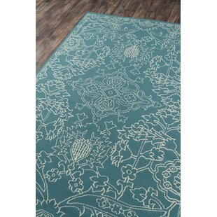 Craine Teal Indoor/Outdoor Area Rug
