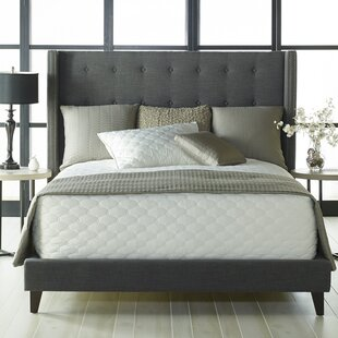 Heverlee Upholstered Platform Bed