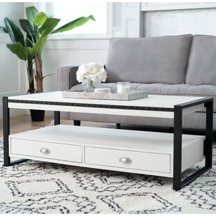 Amey Coffee Table with Storage
