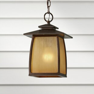 Bridgwater 1-Light Outdoor Hanging Lantern