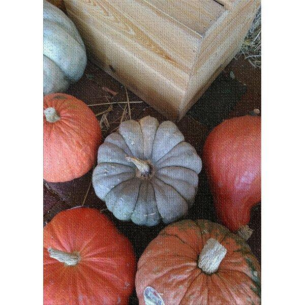 East Urban Home Pumpkin Patch Cotton Red Area Rug Wayfair