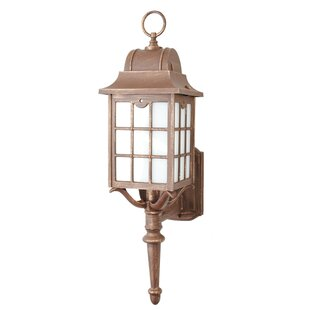 Read Reviews Archard 1-Light Outdoor Sconce By Darby Home Co