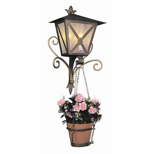Rayden 2-Light Outdoor Wall Lantern by Astoria Grand