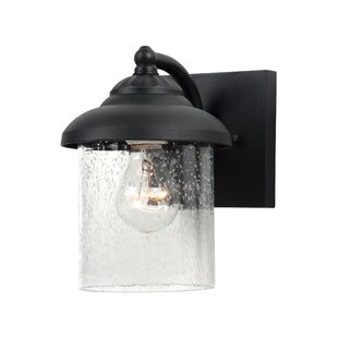 Sellman 1-Light Outdoor Wall Lantern