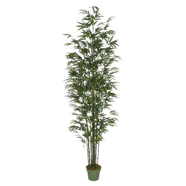 bayou breeze dany artificial bamboo tree in pot & reviews | wayfair