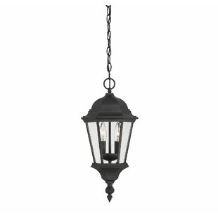 Charlton Home Randel 2-Light Outdoor Hanging Lantern