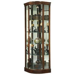 Darby Home Co Brinker Curio Cabinet