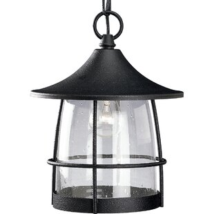 Alcott Hill Triplehorn 1-Light Incandescent Hanging Lantern