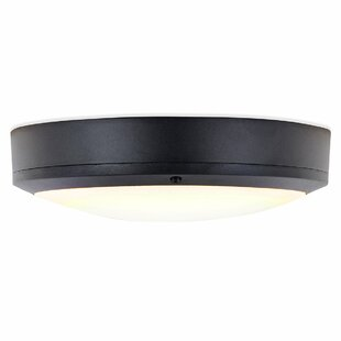 Palisades Outdoor Flush Mount By Sol 72 Outdoor