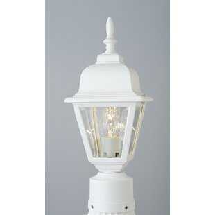 Charlton Home Lyndon 1-Light Lantern Head