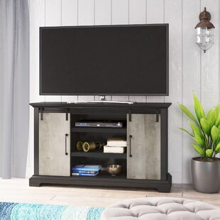 Springdale Sliding Door TV Stand for TVs up to 55