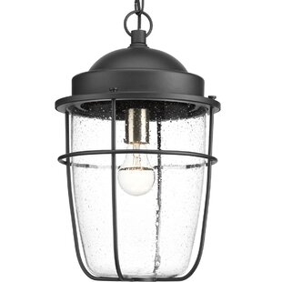 Breakwater Bay Kearney 1-Light Outdoor Hanging Lantern